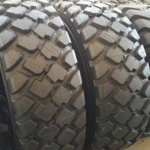 Truck Tires for Sale at Wholesale Prices 17.5-25-B01N Radial Loader Tires